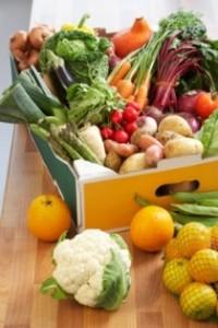 blog-tips-for-environmentally-friendly-living